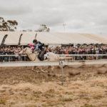 kulin-bush-races-0501