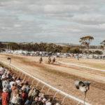kulin-bush-races-0627
