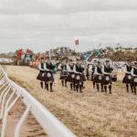 kulin-bush-races-0914
